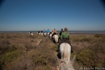 Riding in the Camargue