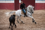 Ana Batista working a young horse on cattle