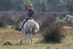 Riding in the Camargue, our leader