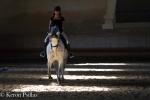 Riding Hall atTarrascon