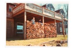 Woodpile, Townsend Road