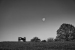 Eric Scouten, Battlefield Moonset, Antietam National Battlefield, NHP