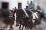 Horses...lensbaby can do it!