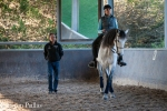 Elna on young Lusitano mare with Pedro Torres