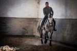 Carlos and Botero, 7 year old Lusitano gelding