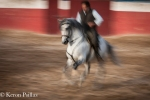 Orlando and new horse, the way I like to photograph motion