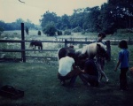 The farrier and Candy, and my brother Paul.