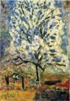 Bonnard's Almond tree